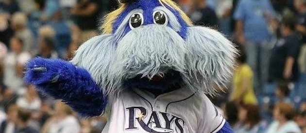 Raymond, the Tampa Bay Rays mascot