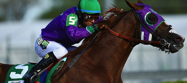 California Chrome finished tied for fourth in the Belmont Stakes, falling short of the Triple Crown